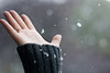 Snowing (victoria.anne) Tags: winter snow gold october winnipeg hand bokeh fingers dani ring snowing 2009 wolseley ihatewinter andthecoldwinterswehaveinwinnipeg notreallywinteryet daniellevaillant