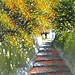 Flowery Steps, Le Thanh Son