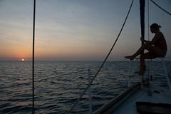 sunrise über der coral sea