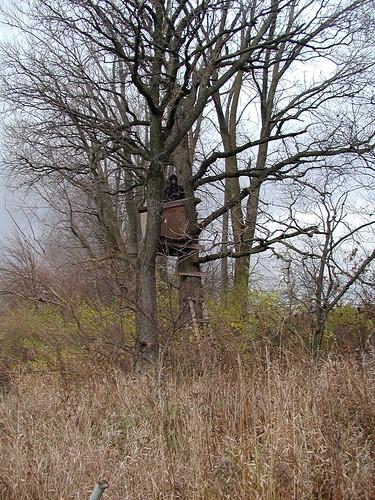 treestand11-18-09