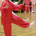 Dutch Tai Chi Festival-164