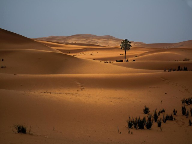 LIGHT IN MERZOUGA