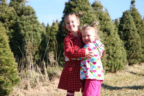 christmas tree farm 3