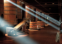 Lights in the Winery (Bryan Nabong) Tags: light robert wine barrels room winery valley napa rays mondavi fermantaion