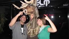 Bou and friends (Woodland caribou) Tags: montreal caribou boreal caribouandyou