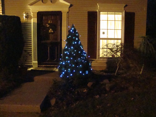 tree with 100 solar LED lights