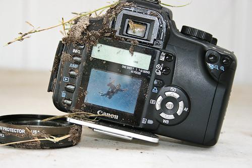 Canon Rebel XT 3000ft
