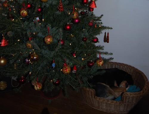 eindelijk een rustige kerst...
