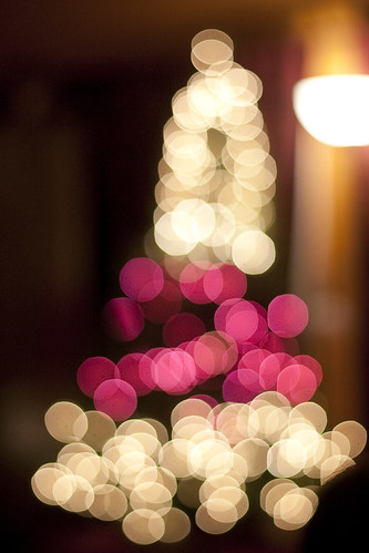 David and Jaden's Bokeh Tree