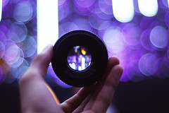 50mm 1.8D. The Nifty. The bokeh prince!. (Kidd *) Tags: christmas 50mm hand with purple bokeh newyear orchard take nikond40 takenwitha50mm buckys50mm 50istehawesomness3