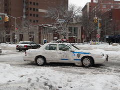NYPD -- On the Job, Almost undercover.. (Diacritical) Tags: trees snow car brooklyn nypd slush 24mm cadmanplaza 2470mmf28 radiocar d700