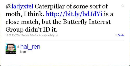 caterpillar-twitter2