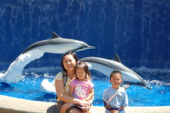 At the Maui Ocean Center