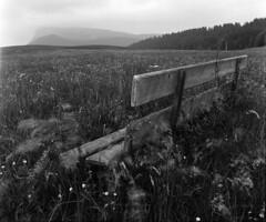 Le vieux banc du chemin de la gare (Tonton Dave) Tags: monochrome landscape champs bank hasselblad fields paysage banc valléedejoux herbes séchey