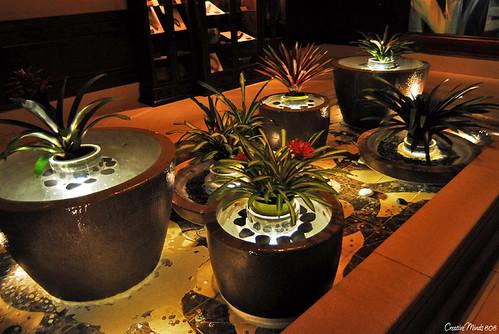 Grand Waikikian overflowing pots
