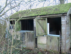 Stables at LongAcre (Landie_Man) Tags: house chickens abandoned birds out farm meat burnt forgotten poultry 1960s derelict destroyed hens intensive unloved terrick bocm