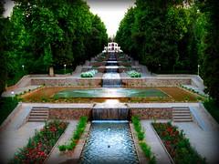 iran maggio 09 (anton.it) Tags: trip iran digitale persia tiles viaggio antonit
