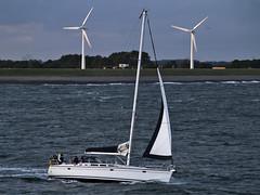 Wind Power.Clich. (frogdog*) Tags: holland windmill sailboat yacht nederland zeeland netherland sail vlissingen windturbine windfarm windpower flushing sailingboat gettyimageswants