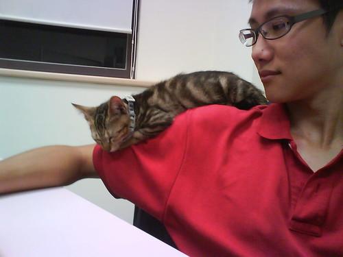 2009.08.05 我要睡在這裡…