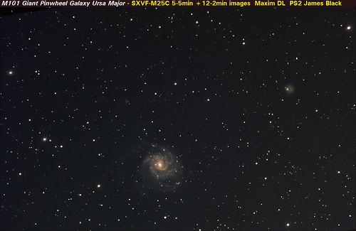 M101 widefield no LP filter