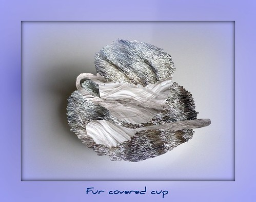 cup, spoon and fur
