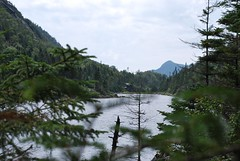 Avalanche lake (Shady Corner Curve, New York, United States) Photo