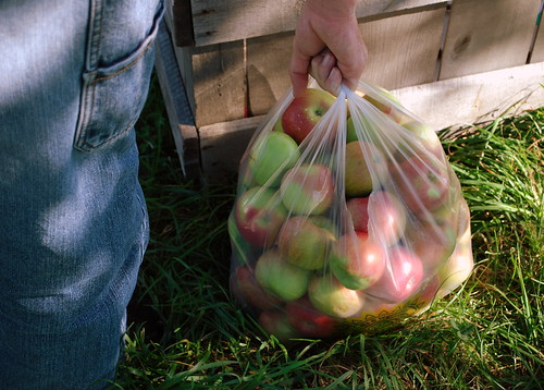 Apple Picking bag