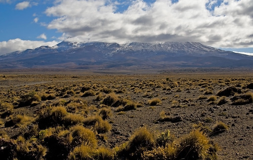 Rangipo Desert"