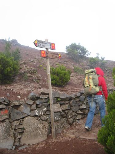 Vereda da Encumeada, PR 1.3, Madeira