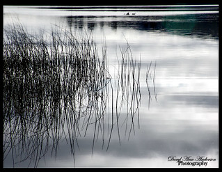 Reflection on Lake Bailey
