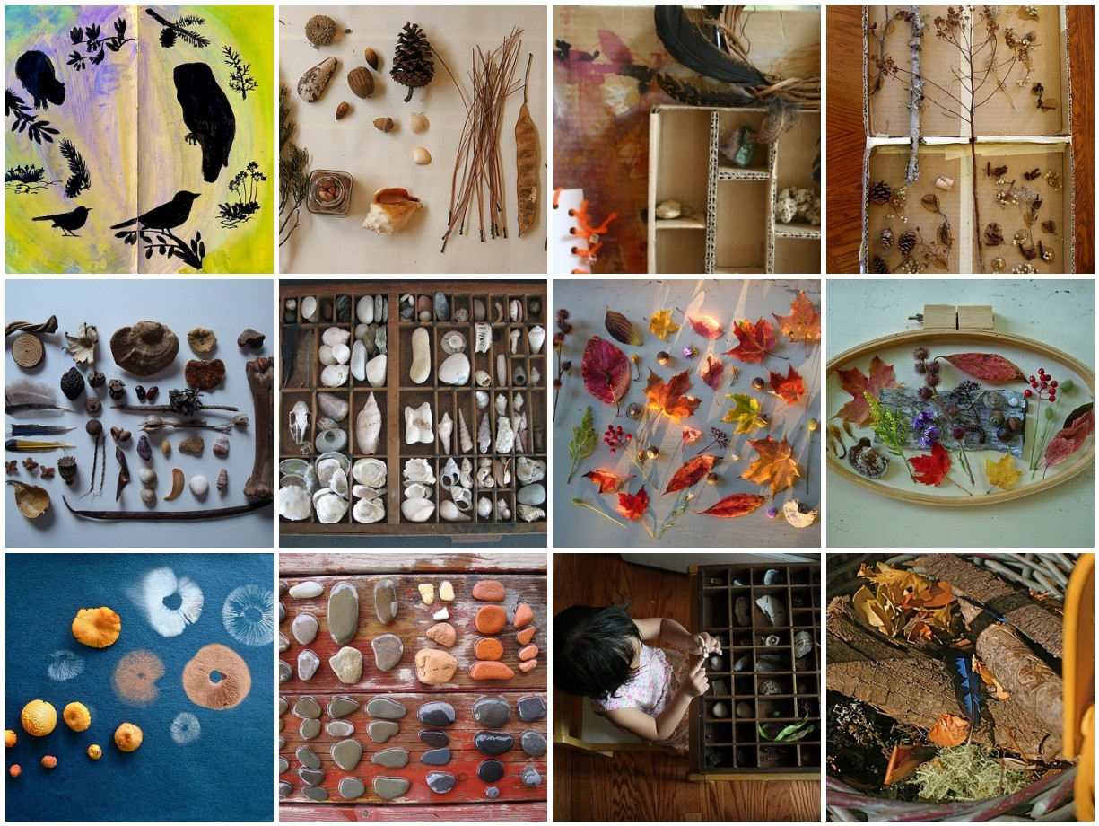 nature collections our friends have made
