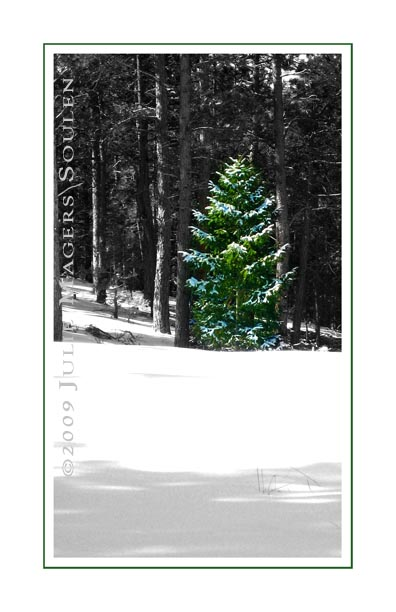 green pine tree Christmas card