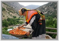 Kalash, the enigma of Hindukush (imranthetrekker , new year new adventures) Tags: pakistan afghanistan mountains tourism nature colors river culture forests pagan kalash ayun cedartrees chitral hindukush romboor imranthetrekker imranschah birir kalashkids kalashgirls nooristan colorfuldresses bamborate chitralguy kalashfestivals valleysofpakistan ochal pagantribes tourisminchitral