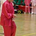 Dutch Tai Chi Festival-163