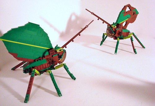 Katydid Battle Bugs