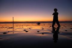 [フリー画像] [人物写真] [子供ポートレイト] [外国の子供] [少年/男の子] [後ろ姿] [夕日/夕焼け/夕暮れ] [ビーチ/海辺]    [フリー素材]