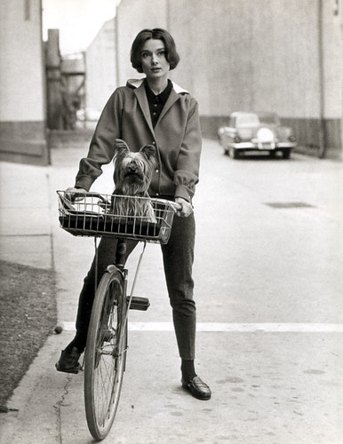 Audrey Hepburn, cycle and dog chic, 1957