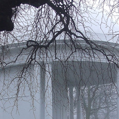 Vale Park in Winter (Lydie's) Tags: winter white mist tree bandstand curved wallasey newbrighton merseyside valepark