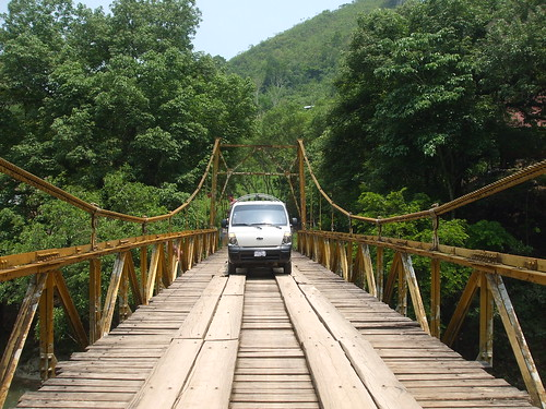 Guatemalan bridge in forest