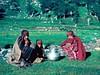 KashmirPop2