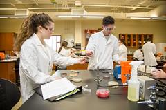 Dr. Jennifer Koehl Microbiology Lab (saintvincentcollege) Tags: jennifer koehl biology microbiology lab labratory classroom saint vincent college svc saintvincentcollege liberalarts science