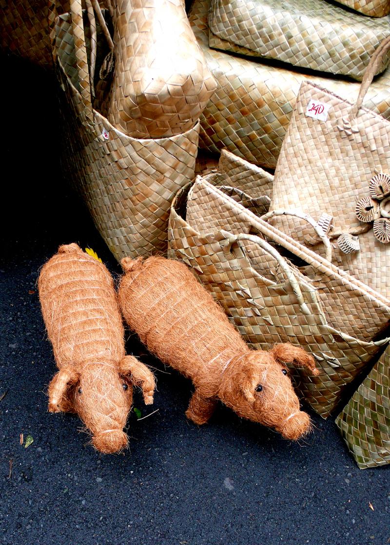 salcedo straw pigs