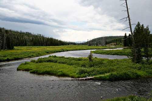 The Lewis River in Yellowstone National Park, South Entrance road.