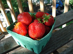 Delicious Local Strawberries