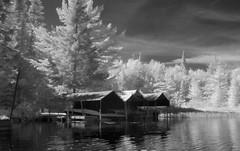 boat docks (pinholerenner) Tags: nature river blackwhite flickr kayak kayaking infrared wilderness pungo canong2 infraredconvertedcamera chiprenner pinholerenner