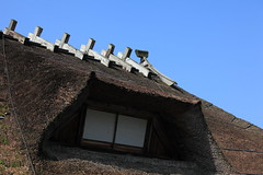 Japanese traditional style farm house / (  ) (TANAKA Juuyoh ()) Tags: old roof house architecture japanese design high ancient exterior folk farm traditional style hires resolution  5d hi residence res   markii