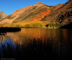 North Lake Autumn (DM Weber) Tags: california autumn fall sierranevadas northlake potofgold coth psa148 explored1132009 dmweber