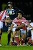 ROBH5057 (Rob vRS) Tags: tonga rugbyunion scotlanda