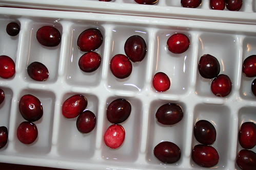 Making Cranberry Ice Cubes
