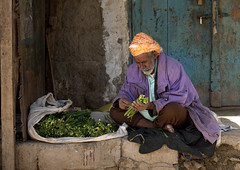 Old bearded man selling qat at the market in Yemen (Eric Lafforgue) Tags: kat arabic drug qat khat yaman 6102 jemen arabiafelix  arabieheureuse  arabianpeninsula    imen  jemenas